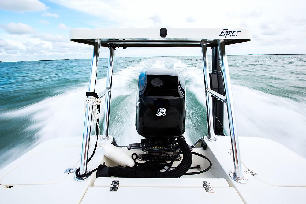 Mercury Engine on Egret Flats Boat