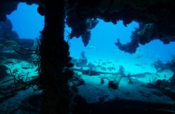 Snorkeling & Diving barge