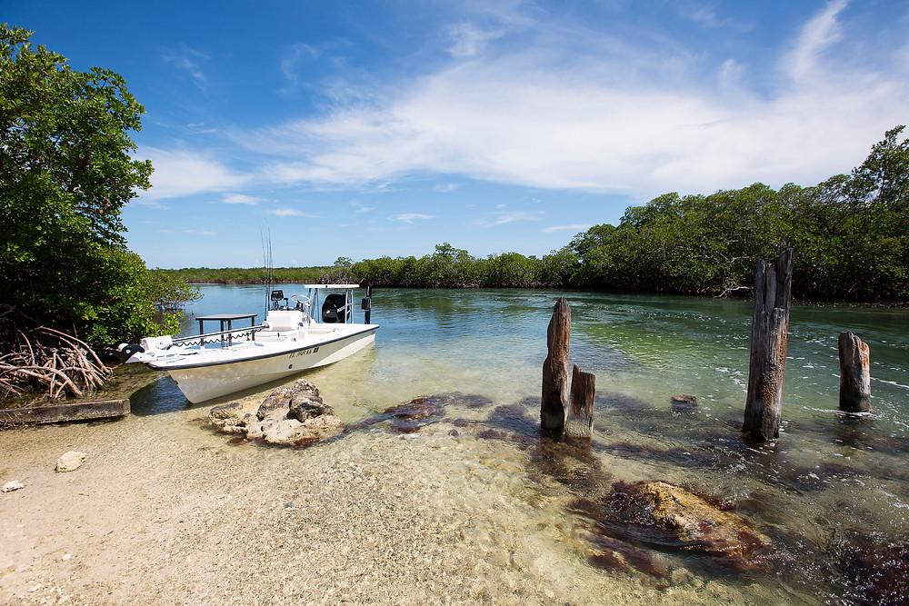 Best flats Boat - Egret