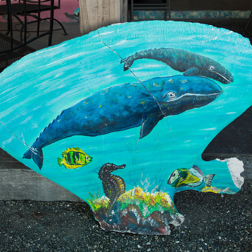 whale bone painting copy