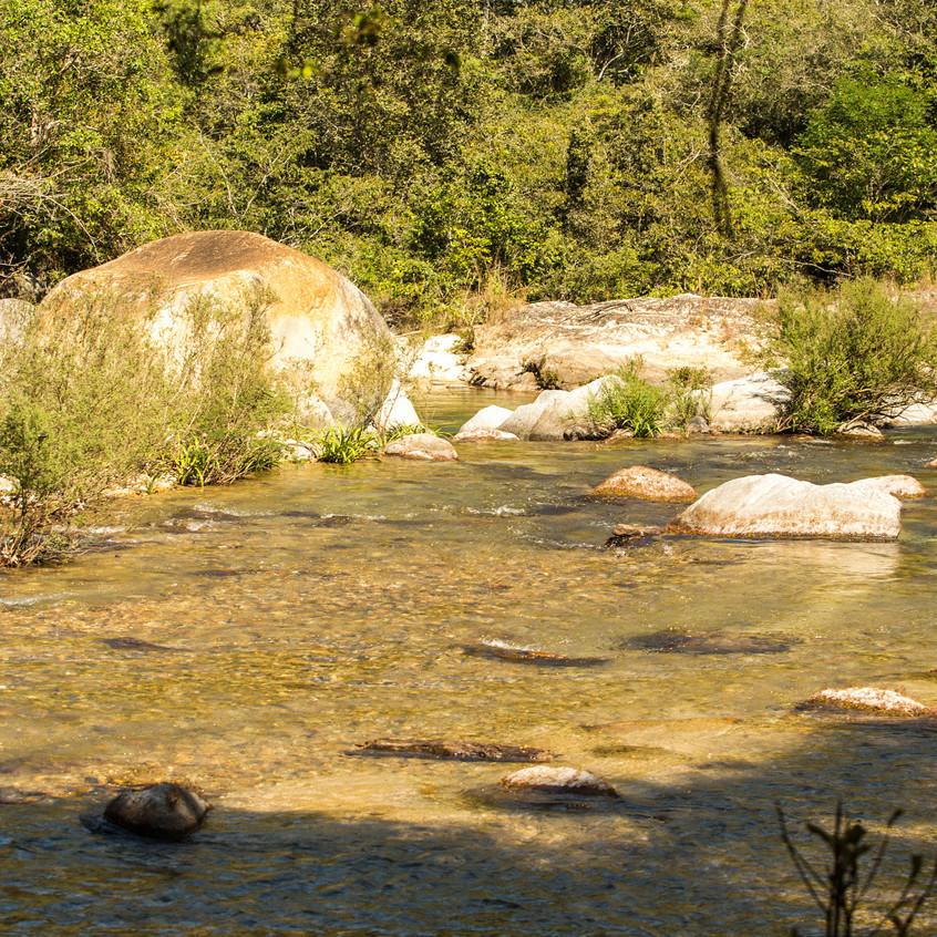 river 2 copy