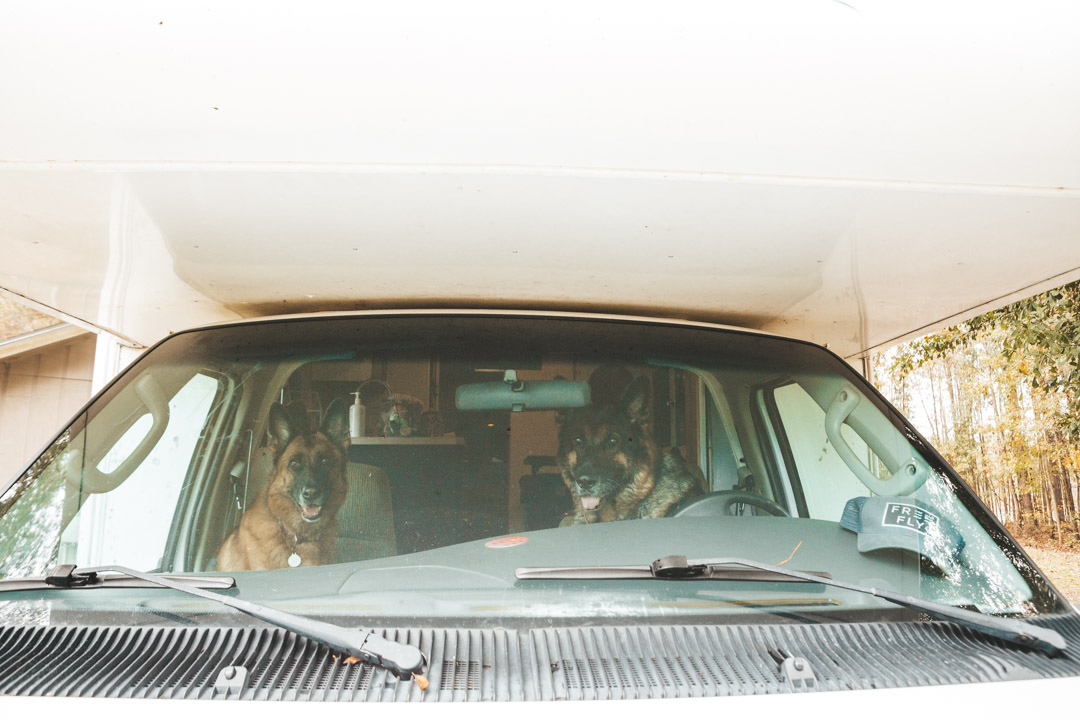 RV Traveling with Dogs