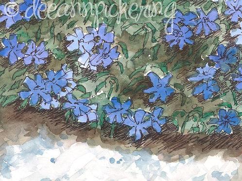 Blue Floral Watercolor Print 8X10