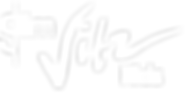 logo_slim_vitzkids.png