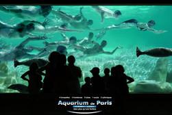 BEAUTIFUL - AQUARIUM PARIS.jpg