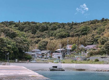 日本貓旅|宮城田代島・日本最大貓島