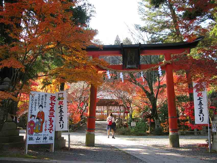 經過鳥居,向鍬山神社的紅葉前進!