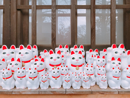 日本貓旅|東京世田谷・豪德寺・小店散策