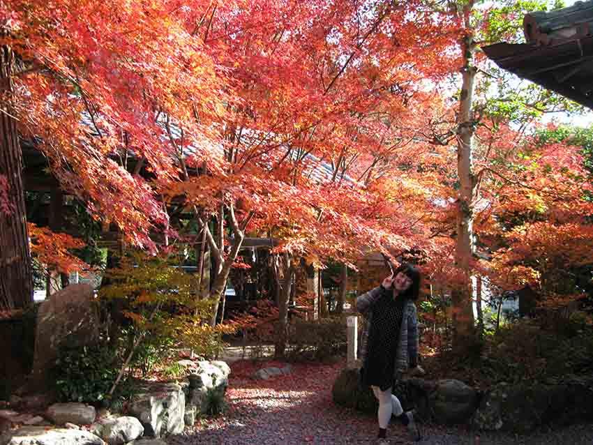 穿深色和素色衣服,才可以襯托出紅紅橙橙的楓葉。