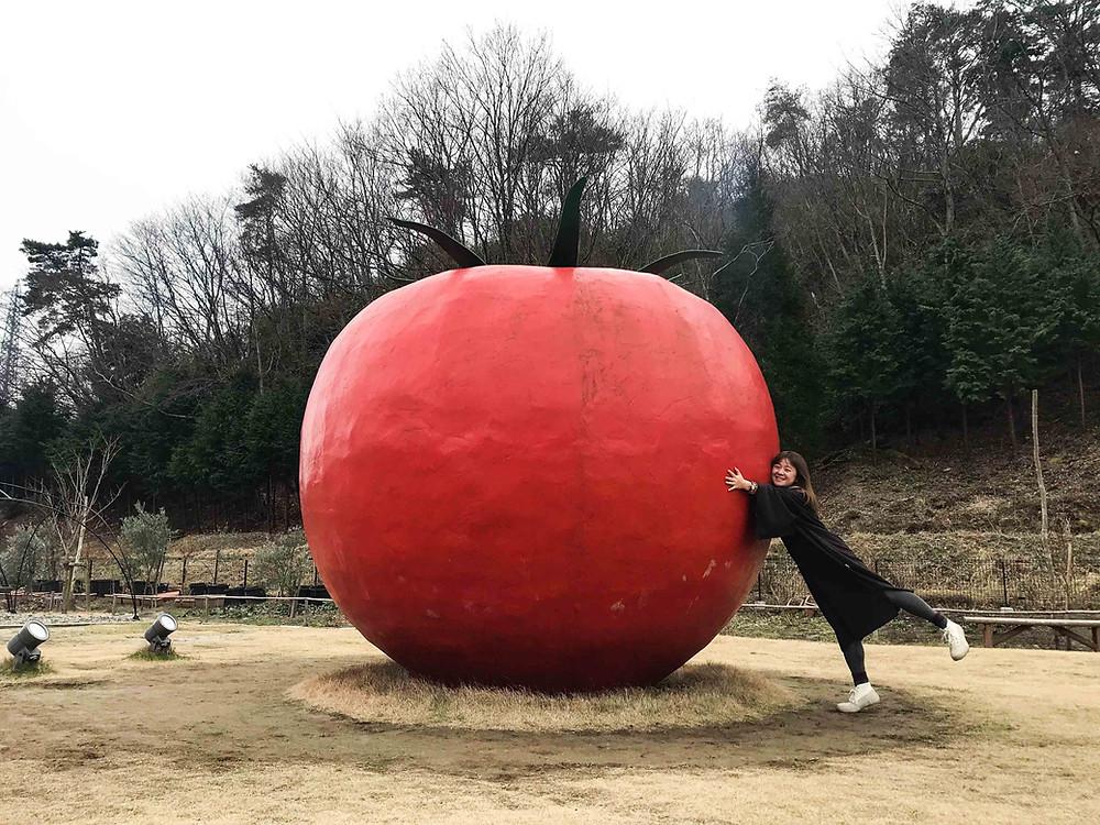 Wonder Farm內有一個超巨型番茄!