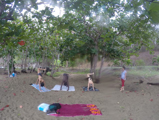 Mindful Morning at the Beach in Tobago, W.I
