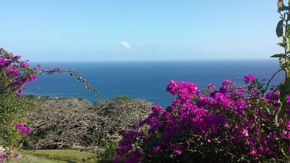 Fort King George. Tobago