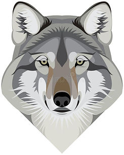 wolf-head-face-western-gray-mascot-vecto