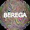 лого+.png