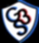 G3S-logo.png