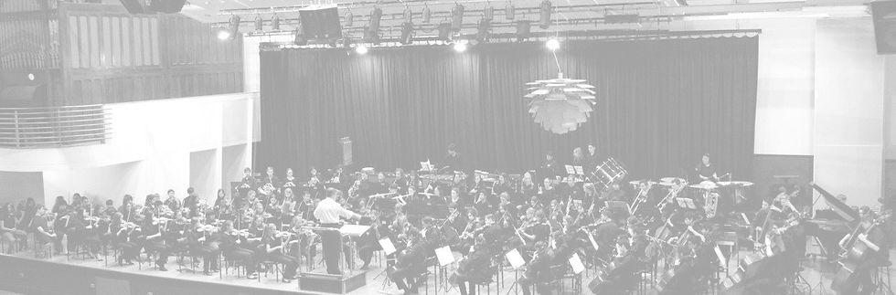 orchestra%2520full_edited_edited.jpg