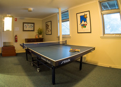 Large ping pong table