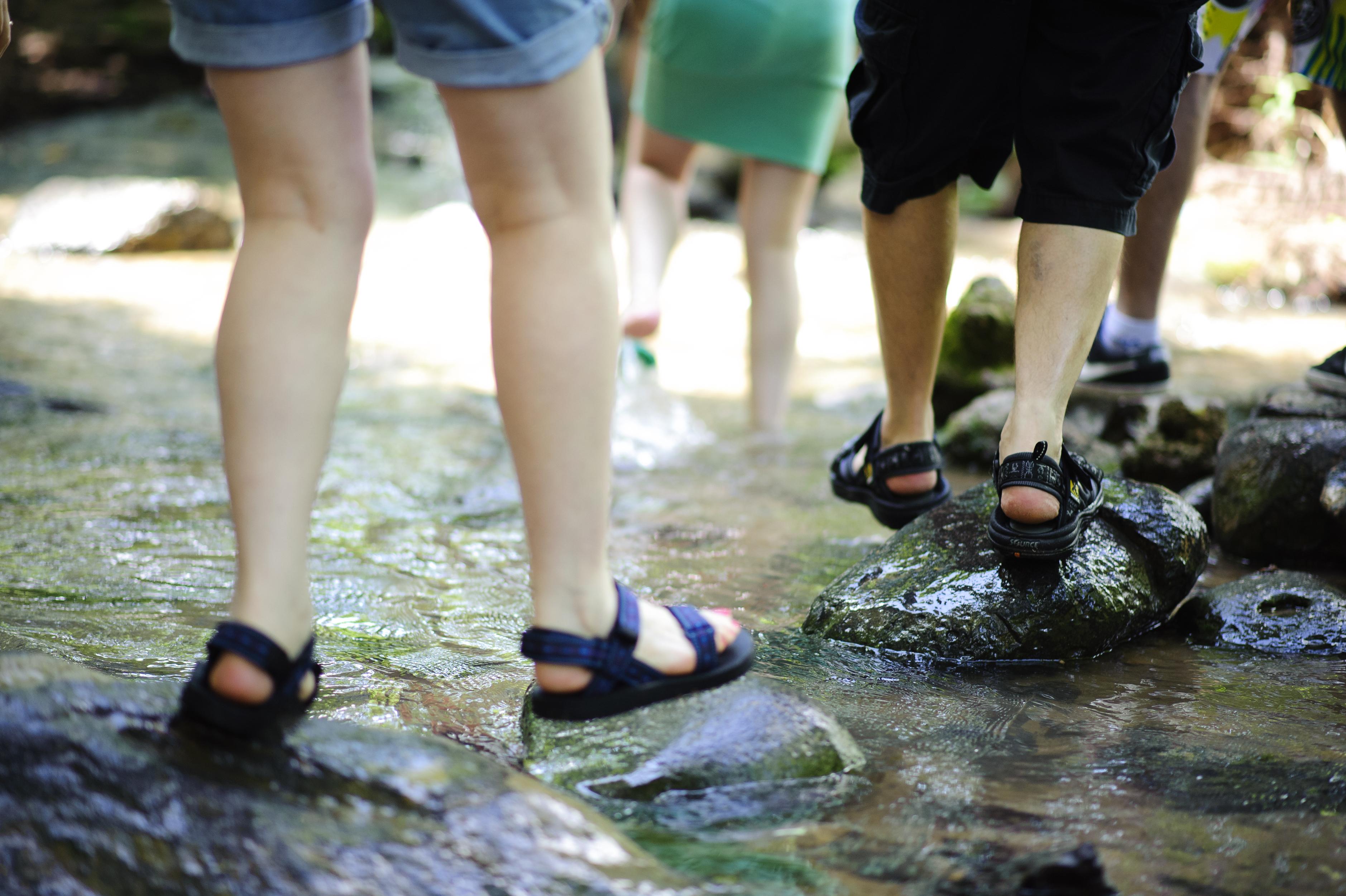 טיול מים בצפון