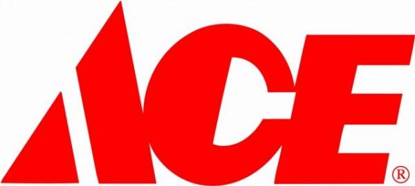 לוגו ace.jpg