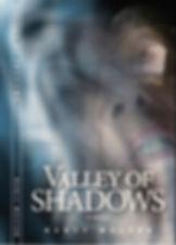 Valley of Shadows artwork in jpeg.jpg