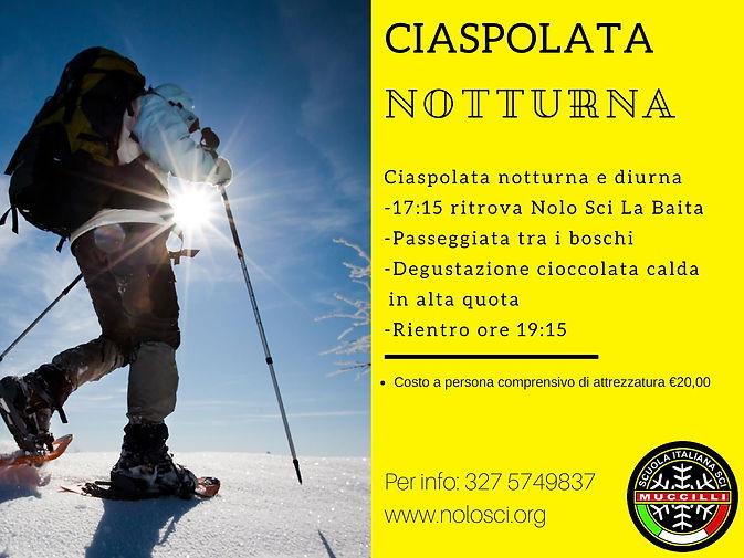 Ciaspolata Notturna