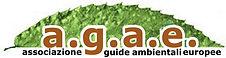 logo_AGAE.jpg