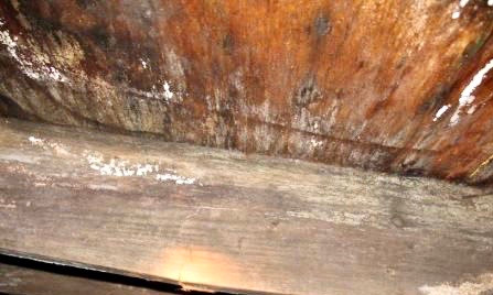 Atlantic Heating & Cooling Mold Remediation