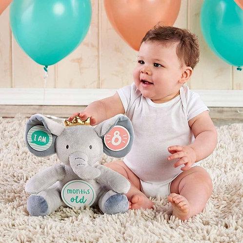 My First Elephant Plush Plus Baby Milestone Markers