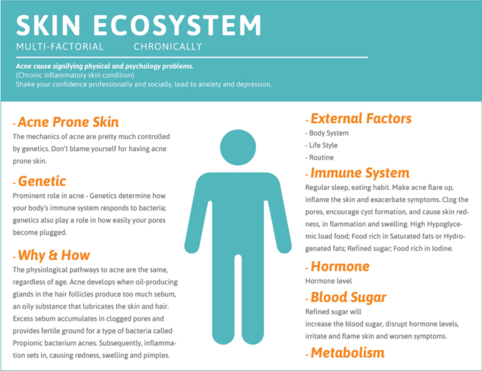 Mavis-App-Skin Ecosystem