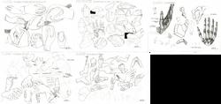 Hand-anatomy-analysis