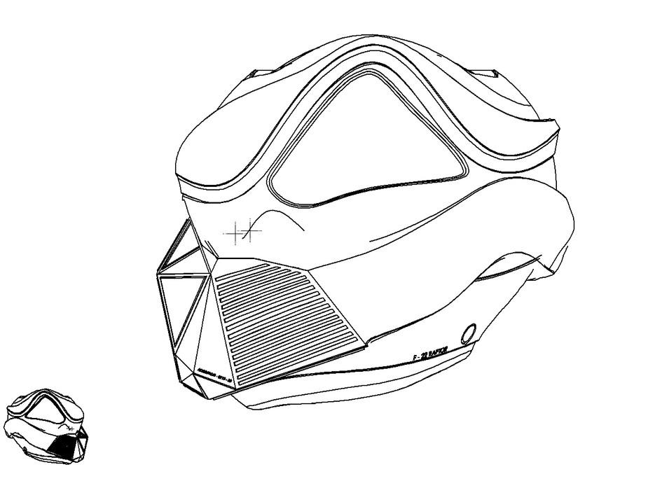 Raptor-Helmet
