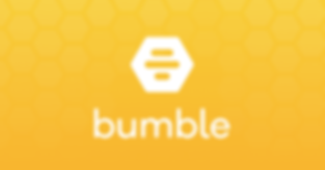 Bumble_CaseStudy_ Cover
