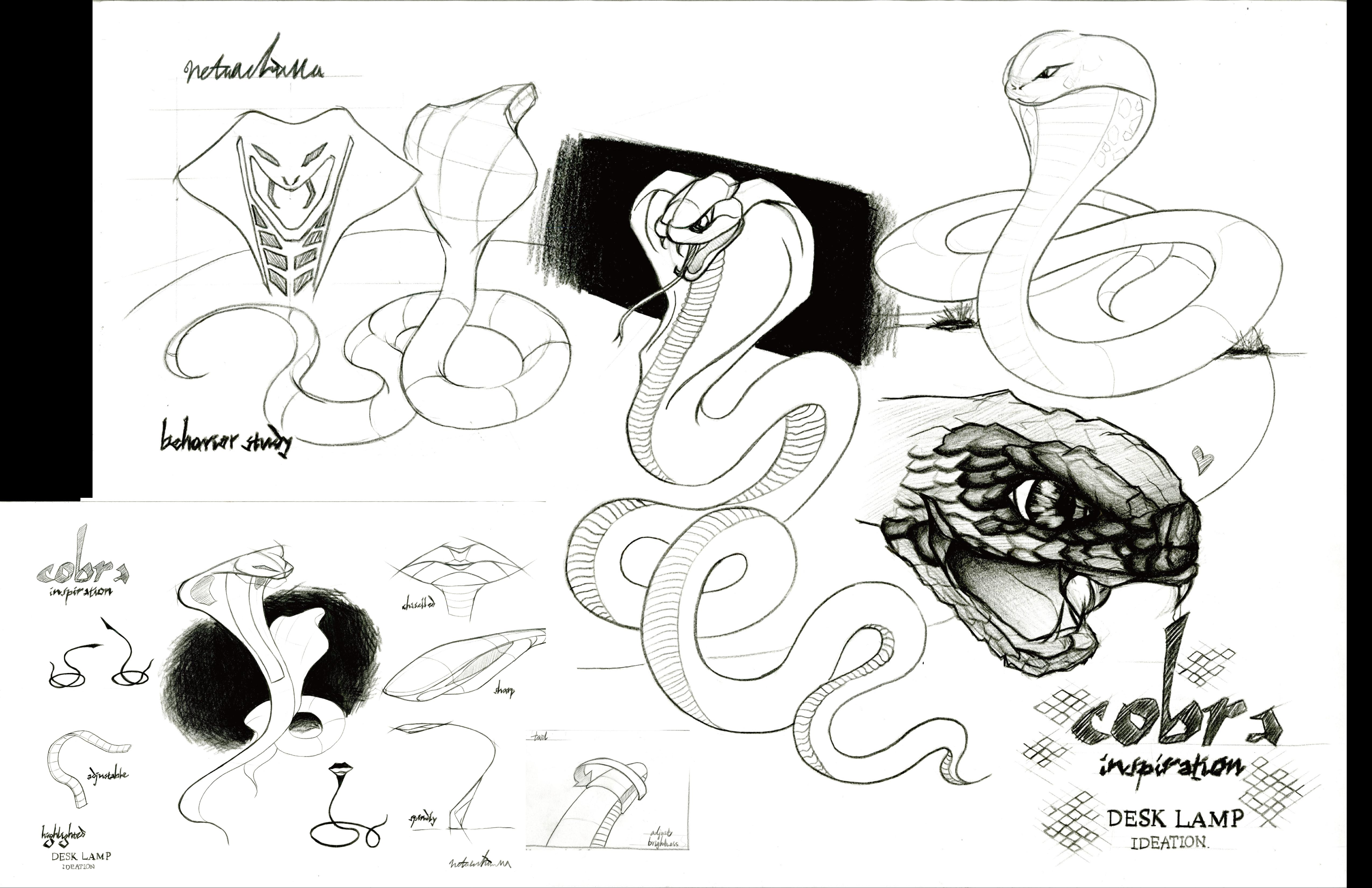 Cobra - Case Study