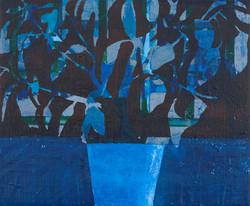 blå plante
