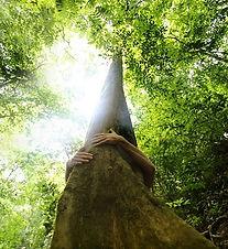 hug tree square.jpg
