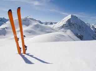 skis standing in snow.jpg