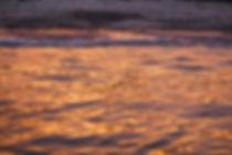 Seafire sunset 2012.jpg