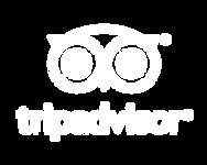trip advisor logo white.png