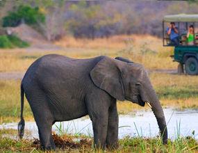 lilongwe-national-park-milawe.jpg