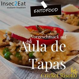 Aula de Tapas Entofood Insec2eat.jpg