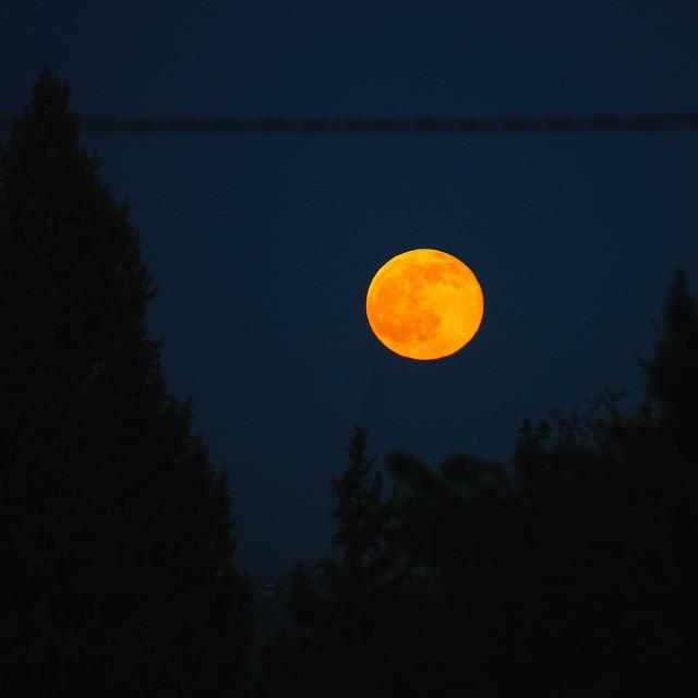 Breathtaking Moonrise