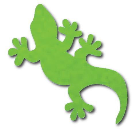 Gecko pin board - 'lime'
