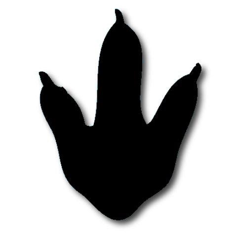 Dinosaur Foot - black