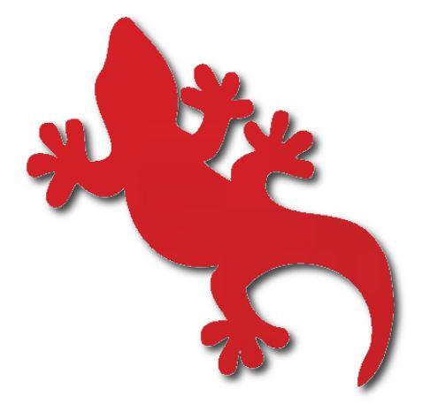 Gecko pin board - 'red'