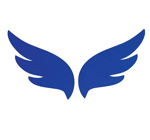 Pair of wings pin board 'royal blue'