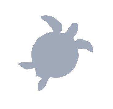 Turtle pin board - 'cool'