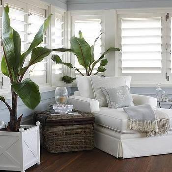 plantation shutters.jpg