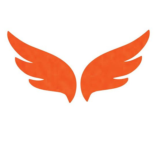 Pair of wings pin board 'tangerine'