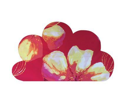 Cloud pin board - 'bloom'