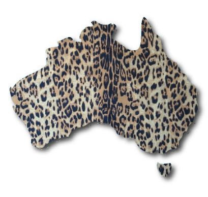 Australia Map pin board  - 'leo'